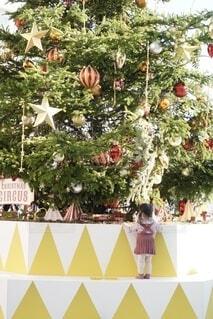 大きなクリスマスツリーと小さな女の子の写真・画像素材[4017182]