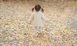 秋 落ち葉の中を歩く女の子の写真・画像素材[4017187]