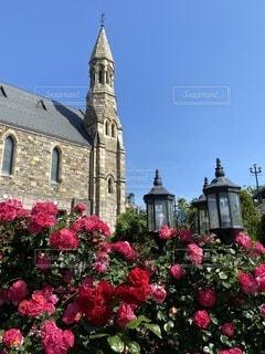 自然,風景,空,花,屋外,旅行,バラ、教会、結婚式場、青空