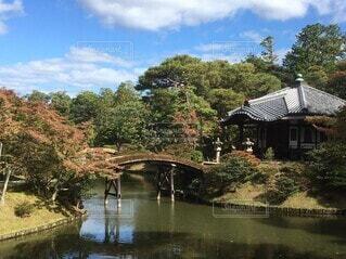 自然,風景,屋外,池,景色,樹木,草木,京都、桂離宮、庭園,橋、