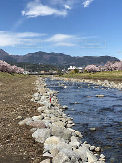 自然,風景,空,花,屋外,雲,水面,山,景色,岩,川、桜、,春めき桜、狩川、川沿い