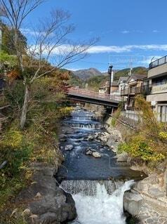 自然,風景,空,秋,橋,屋外,川,家,樹木,湯河原