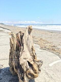 自然,海,空,屋外,ビーチ,砂浜,海岸,地面,彫刻、芸術作品、漂着物