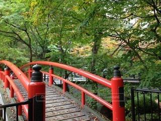 伊香保温泉の河鹿橋の写真・画像素材[4113076]
