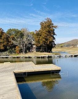 自然,風景,空,公園,秋,屋外,湖,青空,水面,池,樹木,新緑,遊歩道,湧き水,木道,厳島湿性公園