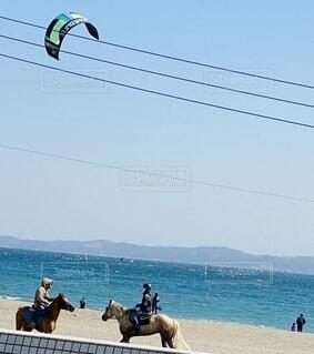 女性,男性,空,屋外,ビーチ,砂浜,青い海,水面,海岸,馬,山並み,日中,乗馬,スポーツカイト