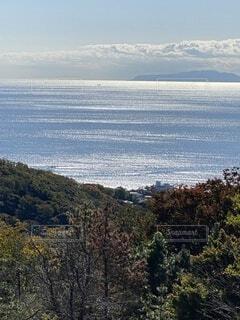 自然,風景,空,屋外,雲,水面,展望,反射,光,樹木,輝き,大島,相模湾,湘南の海