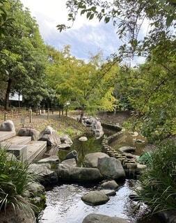 空,公園,屋外,水面,景色,樹木,岩,せせらぎ,流れ,ガーデン