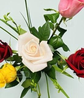 花,屋内,ピンク,赤,花束,黄色,バラ,薔薇,テーブル,草木