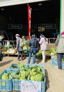 女性,男性,食べ物,風景,人物,人,マーケット,路上販売,三浦,新鮮野菜