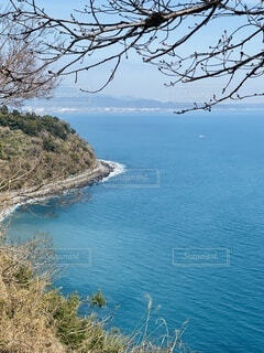 自然,風景,海,空,春,街並み,屋外,ビーチ,島,道路,水面,展望,山,景色,樹木,見晴らし,眺め,相模湾