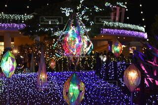 夜,光,樹木,イルミネーション,ライトアップ,クリスマス,江ノ島,宝石,クリスタル,点灯,エモい,クリスマス ツリー