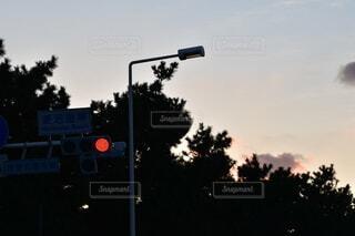 空,屋外,雲,道路,夕方,影,樹木,信号機,通り,交通,エモい,街路灯,トラフィック ライト