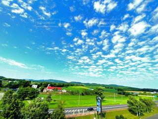 自然,風景,空,屋外,雲,水色,草,新緑,草木,日中