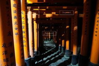 冬,夜,京都,鳥居,暗い,影,たくさん,千本鳥居,伏見稲荷,陰,怖い