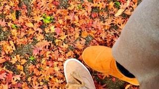 自然,秋,紅葉,カップル,靴,屋外,足元,葉,オレンジ,地面,二人