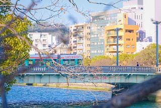 春訪れる京橋川の写真・画像素材[4192347]