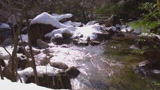 自然,冬,森林,木,雪,屋外,川,水面,岩,広島,流れ,ひろしま,石ヶ谷峡