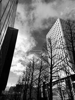空,建物,冬,ビル,屋外,雲,モノクロ,タワー,樹木,高層ビル,日中,黒と白