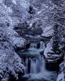 自然,風景,森林,雪,水,川,冬景色,景色,滝,冷たい,宮城,氷瀑,鳳鳴四十八滝