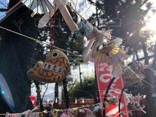 屋外,神社,初詣,おみくじ,新年