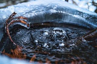 冬,雪,水面,池,氷,氷の世界
