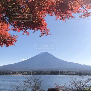 風景,空,秋,富士山,紅葉,屋外,水面,山,景色,樹木,河口湖