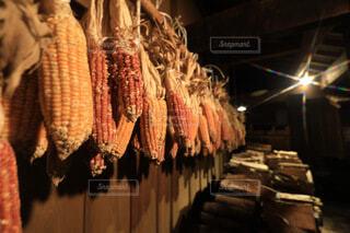 食べ物,温泉,田舎,九州,トウモロコシ,干物