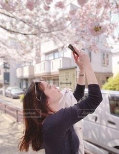 女性,20代,風景,春,カメラ,桜,ロングヘア,木,屋外,ピンク,サングラス,黒,散歩,花見,女子,スマホ,撮影,満開,茶髪,お花見,人物,横顔,人,写真,スマートフォン,お散歩,携帯,おでかけ,おさんぽ,お出かけ,4月,さくら