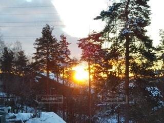冬,森林,雪,屋外,朝日,青空,山,景色,正月,お正月,日の出,北欧,新年,初日の出,日中