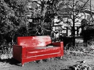 屋外,赤,ベンチ,椅子,古い,樹木,家具