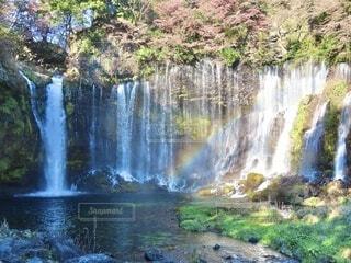 自然,秋,屋外,虹,水面,池,滝