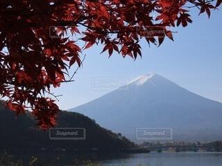 自然,風景,空,秋,屋外,湖,水面,山,景色,樹木,草木,カエデ
