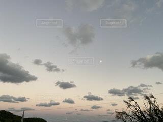 学生,空,秋,冬,屋外,植物,雲,綺麗,夕暮れ,水色,オレンジ,背景,月,iphone,大学生,グラデーション,くもり,壁紙,草木,美