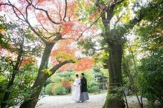 秋,紅葉,屋外,結婚式,花嫁,前撮り,和装,ウェディング