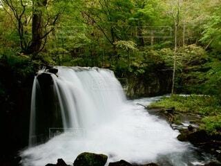 自然,森林,屋外,川,景色,滝,樹木,青森,奥入瀬渓流