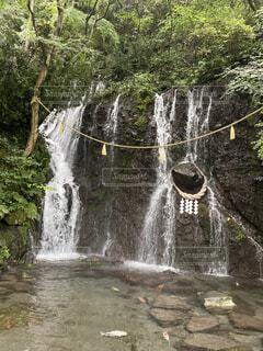 自然,水面,滝