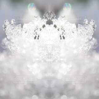 雪の写真のミラー加工の写真・画像素材[4045958]