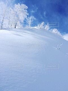 冬,雪,白,青空,青,雪景色,運動,ウィンタースポーツ