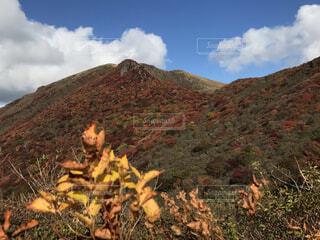 自然,風景,秋,紅葉,山,山腹,久住山,牧ノ戸峠