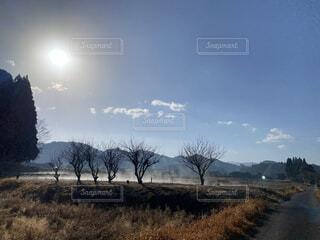 自然,風景,空,冬,木,屋外,太陽,森,雲,青空,青,ウォーキング,散歩,冬景色,林,田舎,霧,荘厳,壮大,大自然,楽しい,樹木,大地,神秘的,正月,柵,お正月,日の出,新鮮,畑,無人,blue,神秘,新年,田舎道,地球,初日の出,徘徊,空間,爽快,草木,明け方,気持ちいい,朝もや,朝霧,体,日中,早起き,大草原,もや,かすみ,構図,果てしない,上昇,健やか,Field,fantasy,映える,気流,mist,朝かすみ,ちりひとつない,霧化粧
