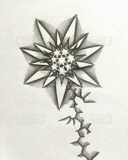 花,絵,モノクロ,アート,白黒,光,絵画,趣味,抽象画,パターン,鉛筆画,黒と白,渦巻