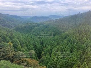 自然,風景,緑,山,景色,渓谷,9月