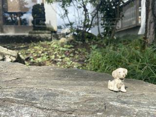 犬のフィギュアがちんまりの写真・画像素材[4038315]
