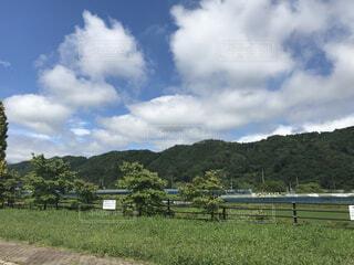 自然,風景,空,屋外,緑,雲,山,景色,草,樹木,新緑,日中