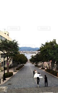 空,屋外,道路,結婚式,花嫁,撮影,樹木,石畳,道,港,歩道,坂道,ウエディング,通り,函館,新郎新婦,街路樹,八幡坂