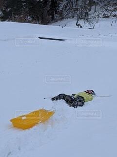 冬,雪,屋外,山,氷,子供,雪遊び,スキー,斜面,日中,覆う,そり