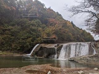 自然,秋,屋外,湖,川,水面,池,山,滝,樹木