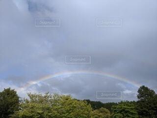 自然,空,屋外,雲,虹,樹木,くもり,日中