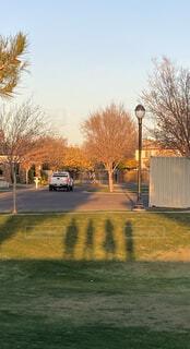家族,空,屋外,車,影,草,仲良し,樹木,車両